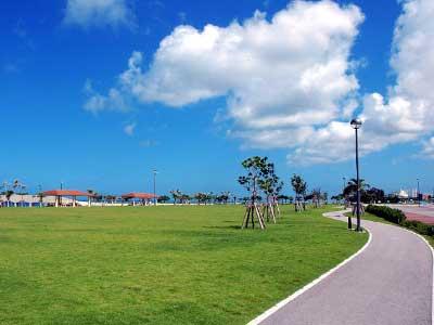 沖縄でバイオエタノール